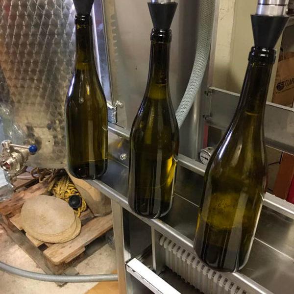 mise-en-bouteille_vigneron-producteur-vins-rugby-vigne-degustation-cuvee-chardonnay-grenache-syrah-viognier-merlot-pressoir-apero-vendanges10